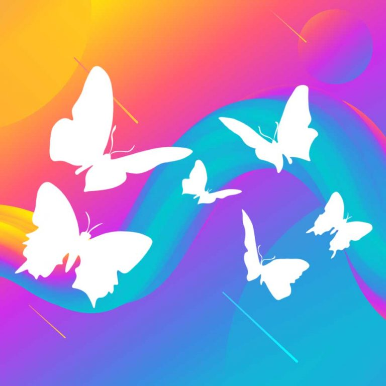 Printing Services from local printers ButterFly Print & Design